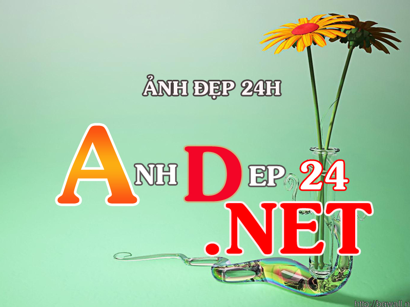 anh ep24.net